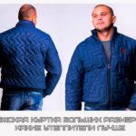 Мужская куртка больших размеров. Какие утеплители лучше