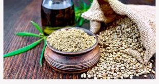 Семена конопли, как новый метод профилактики вашего организма