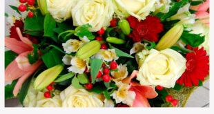 Особенности Живых Цветов